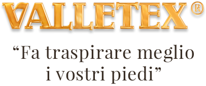 logo valletex
